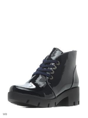 Ботинки EVITA. Цвет: синий