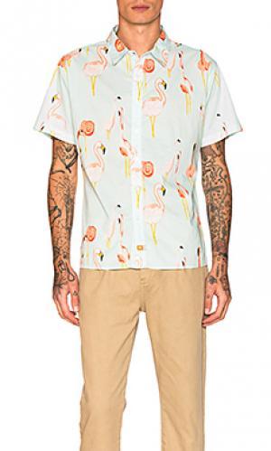 Рубашка mingo Ambsn. Цвет: нежно-голубой