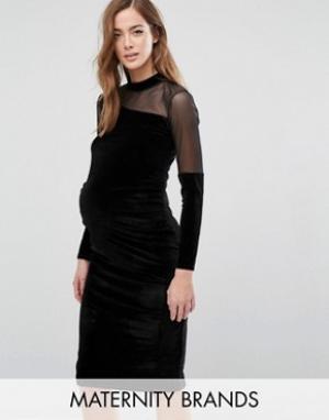 Bluebelle Maternity Бархатное облегающее платье для беременных с сеточкой Matern. Цвет: черный