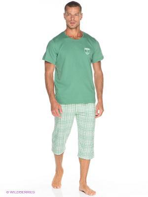 Комплект одежды Vienetta Secret. Цвет: зеленый, белый