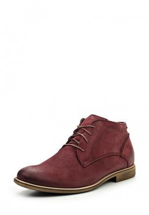 Ботинки Giatoma Niccoli. Цвет: бордовый