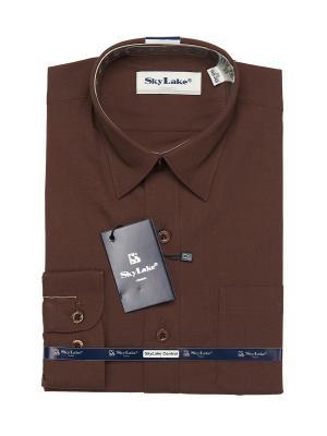 Рубашка Sky Lake. Цвет: коричневый