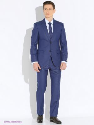 Мужской костюм Barkland. Цвет: голубой