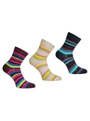Носки 3 пары Master Socks. Цвет: темно-синий, сливовый, бежевый