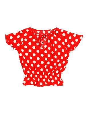 Блузка PETITE MARI. Цвет: красный, белый