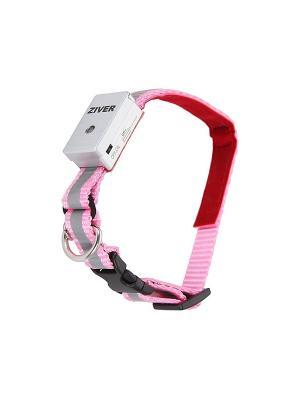 Ошейник светящийся Ziver 1,2х30см.. Цвет: розовый