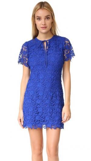 Платье Phoebe Shoshanna. Цвет: голубой