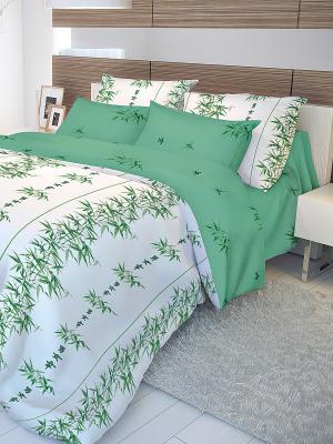 Постельное белье Бамбук Волшебная ночь. Цвет: зеленый, белый