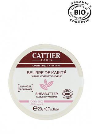 Масло Cattier