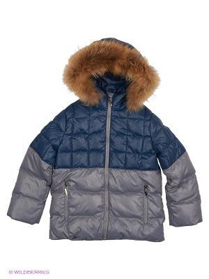 Куртка Барри Аксарт. Цвет: синий