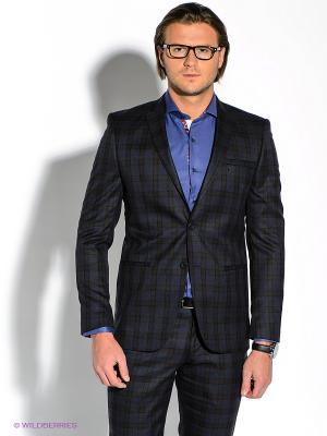 Пиджак Alex DANDY. Цвет: темно-синий, темно-коричневый
