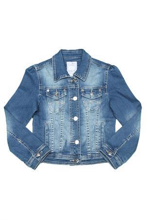 Куртка Dodipetto. Цвет: голубой