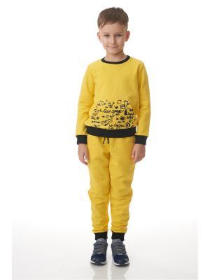 Брюки EMDI. Цвет: желтый