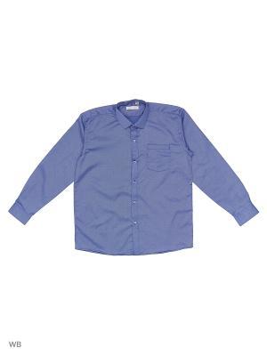 Рубашка FASHION LEADER. Цвет: голубой
