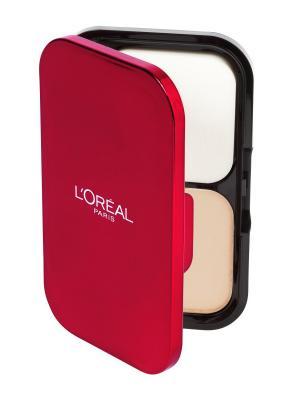 Ультрастойкая пудра для лица Infaillible, матирующая, оттенок 160, Золотисто-песочный, 10 гр L'Oreal Paris. Цвет: бежевый