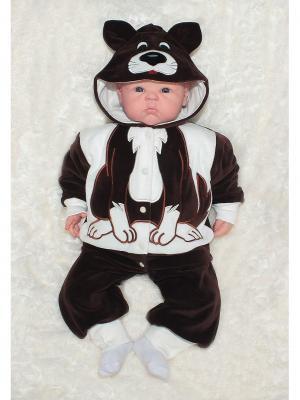 Костюм: кофточка и брюки СОБАКА В мире животных ОСЬМИНОЖКА. Цвет: темно-коричневый, белый