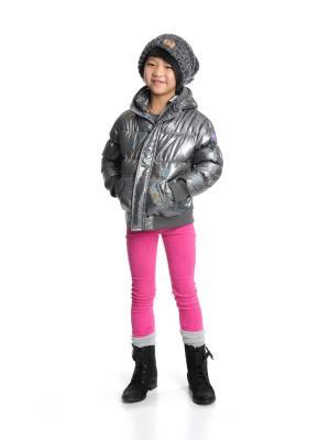 Куртка Appaman. Цвет: серый