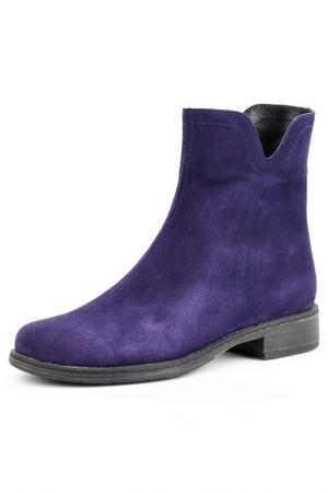 Ботинки Vita Ricca. Цвет: фиолетовый