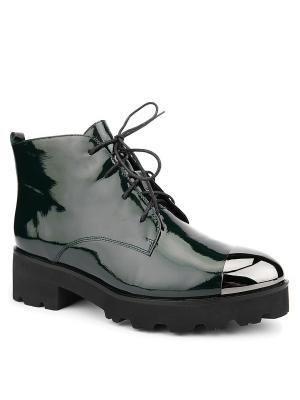 Ботинки EMILIA ESTRA. Цвет: зеленый