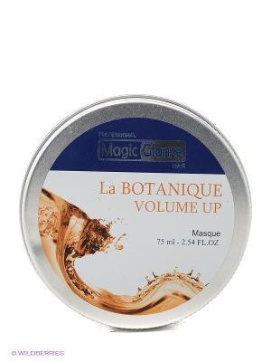 Маска для волос La Botanique Mask Volume, 75 мл Magic Glance. Цвет: серебристый