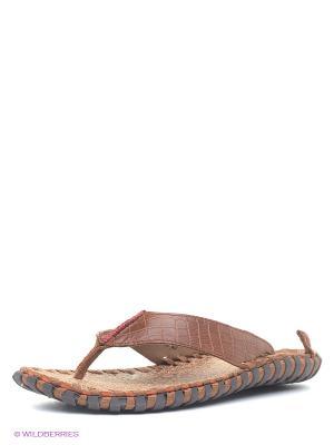 Пантолеты Nexpero. Цвет: коричневый