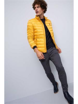 Куртка U.S. Polo Assn.. Цвет: желтый
