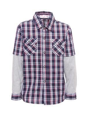 Рубашка DAMY-M. Цвет: синий
