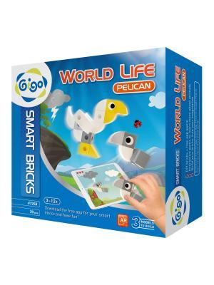 Животный мир, Пеликан/WORLD LIFE, PELICAN Gigo. Цвет: серый, желтый