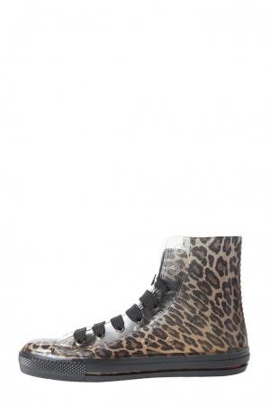 Кеды  leopardo-37-леопардовый Feith