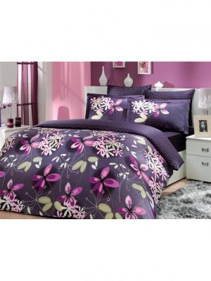Кпб семейный сатин CHICHEK фиолетовое HOBBY HOME COLLECTION. Цвет: фиолетовый