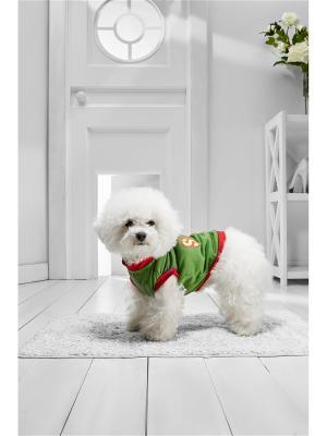 Жилет В ожидании Рождества для маленьких и средних пород собак весом 4-12 кг, длиной спинки 35-40 см Nothing but Love. Цвет: зеленый, белый, темно-красный
