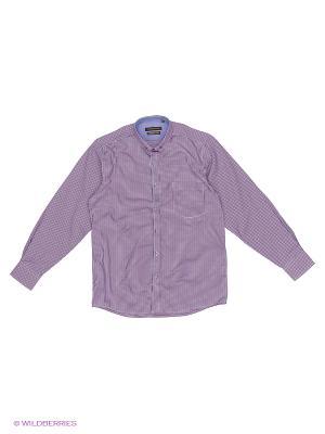 Рубашка Imperator. Цвет: сиреневый, голубой