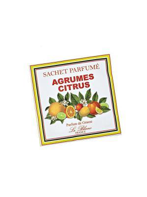 Саше ароматическое Цитрус Le Blanc.. Цвет: зеленый, белый, желтый