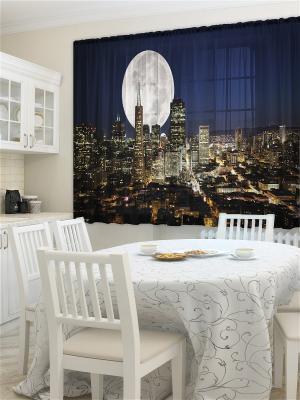 Фототюль для кухни Лунный свет ZLATA KORUNKA. Цвет: синий, кремовый