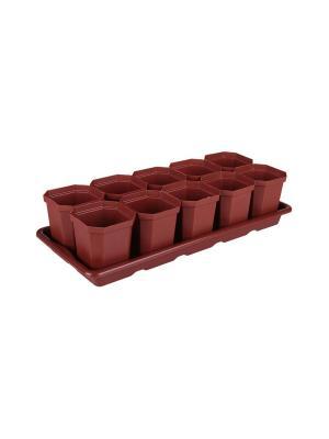 Набор для рассады (10 горшков) Альтернатива. Цвет: коричневый