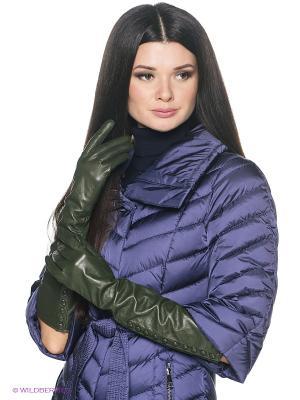 Перчатки женские Piero. Цвет: зеленый