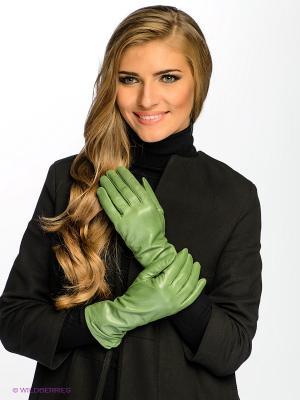 Перчатки Dali Exclusive. Цвет: темно-зеленый