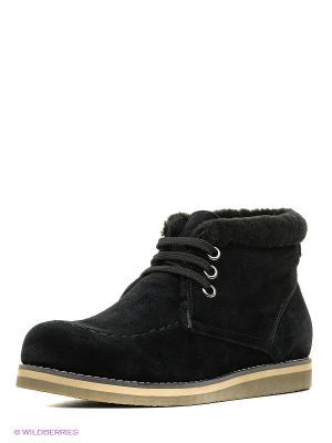 Ботинки Companion. Цвет: черный