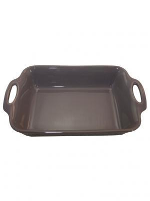 Прямоугольное блюдо 41 см 4,6л Appolia. Цвет: серый