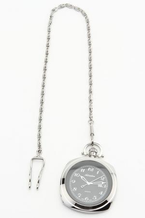 Часы наручные Adriatica. Цвет: серебряный