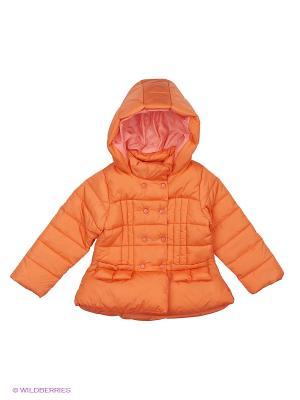 Куртка ARBOR VITAE. Цвет: оранжевый