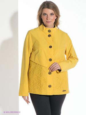 Куртка D`imma. Цвет: желтый