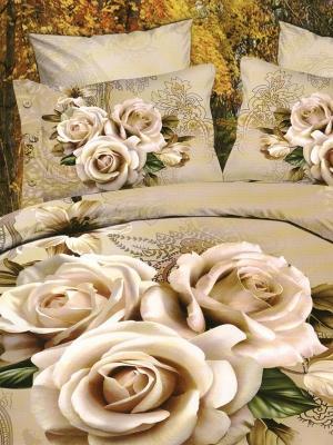 Комплект постельного белья Дорис Sofi de Marko. Цвет: светло-коричневый
