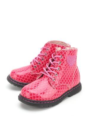 Ботинки Indigo. Цвет: фуксия