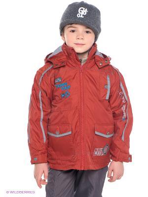Куртка Hippo Hoppo. Цвет: красный, серый