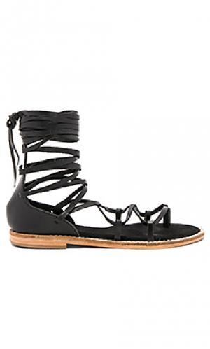 Сандалии со шнуровкой JAGGAR. Цвет: черный