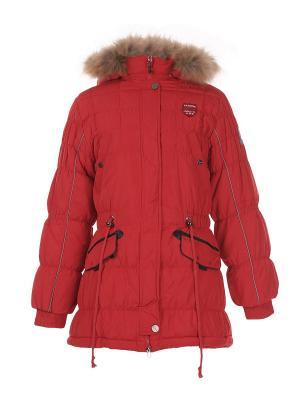 Куртка Arista. Цвет: красный