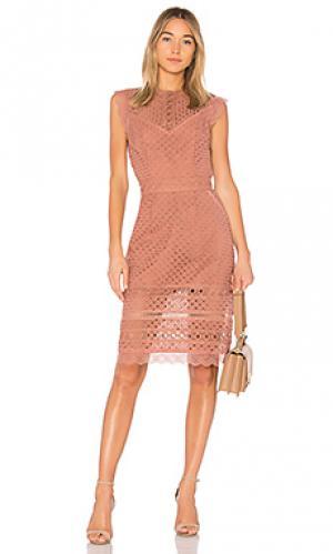 Мини платье lia RAVN. Цвет: rose