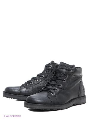 Ботинки El Tempo. Цвет: черный