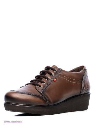 Ботинки Benta. Цвет: коричневый